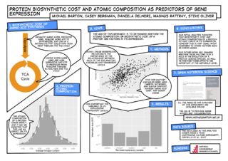 A poster illustrating my research into cost related gene expression.