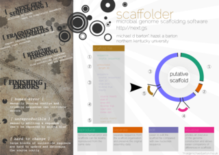 A poster illustrating my scaffolder software